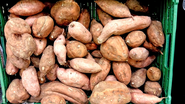 sweet potatoes in box