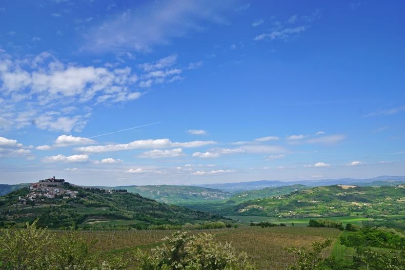Motovun hills